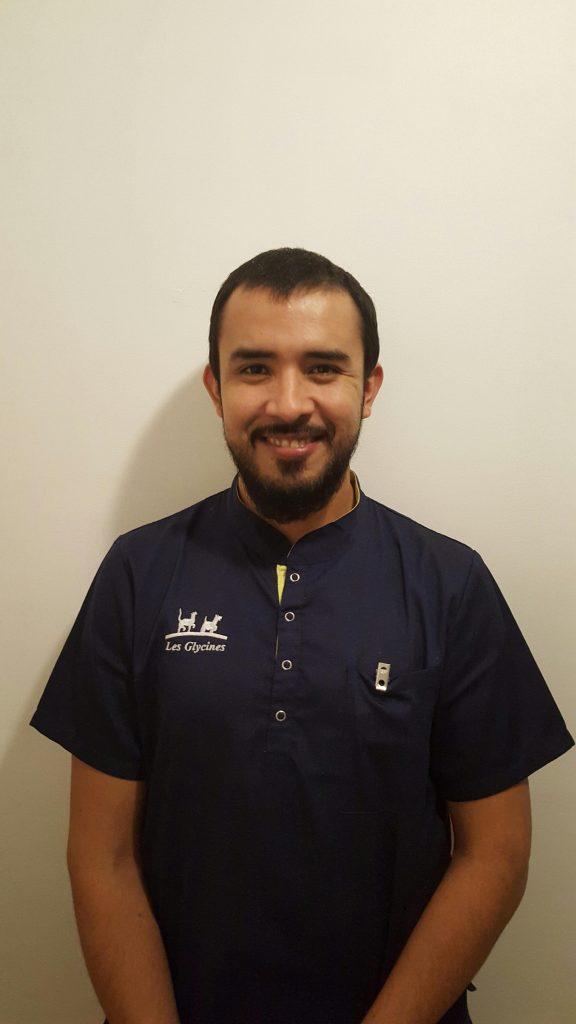 Dr FERNANDO SANTISTEBAN